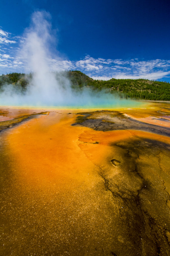 Yellowstone Geyser 1